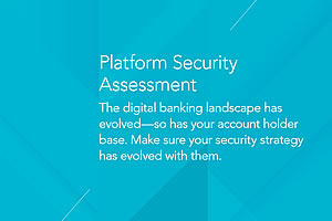 Platform Security Assessment