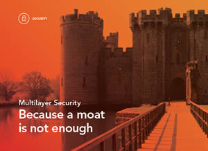 Multilayer Security- Because a moat is not enough